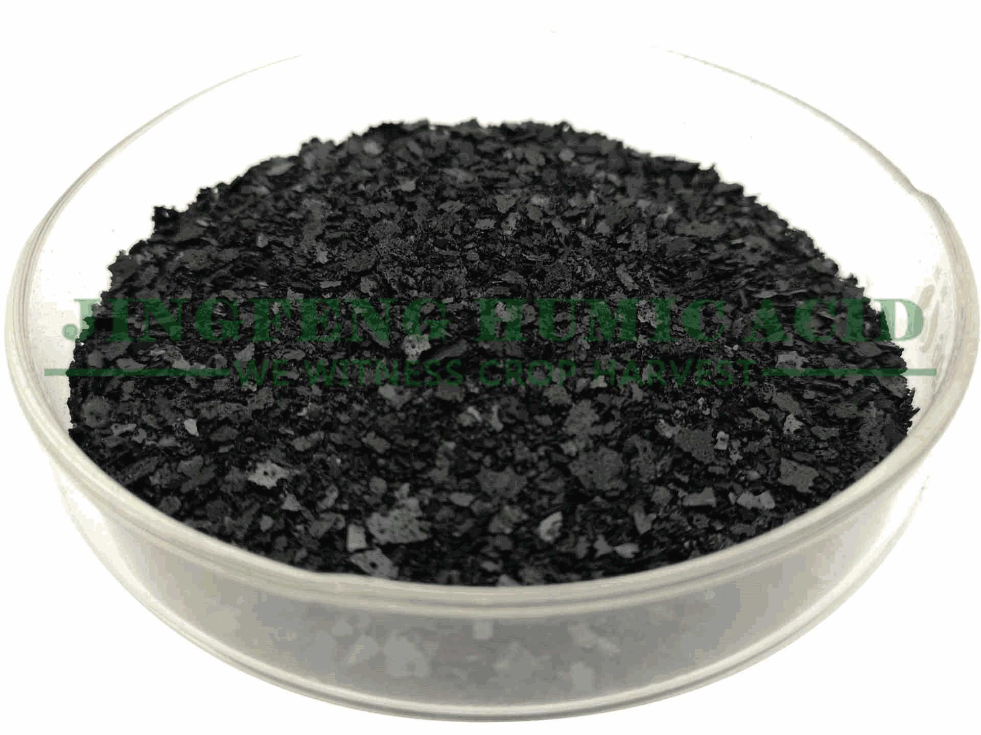 什么是海藻酸肥料?